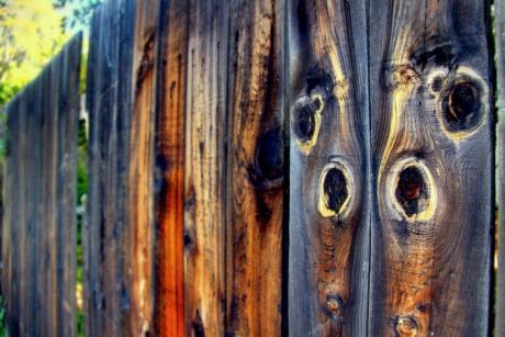 fence1-2r